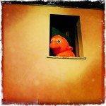 Sergio_Maria_Roscioni_SmartPhotography_15